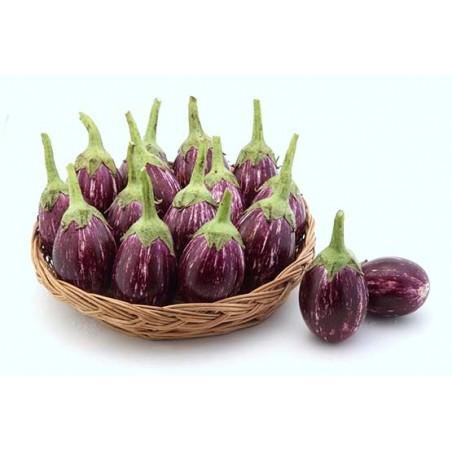 Brinjal - Dwarf Purple Round