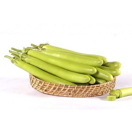 Brinjal - Green Long